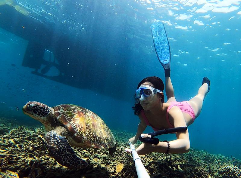 Nicole Aloha diving with a sea turtle