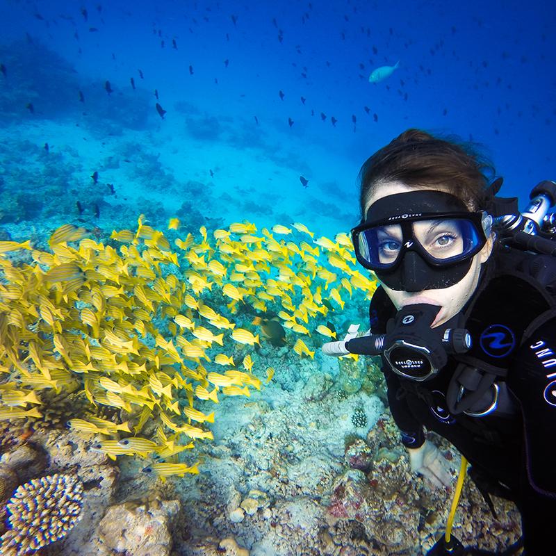 As câmeras GoPro são à prova d'água a até 10 metros de profundidade