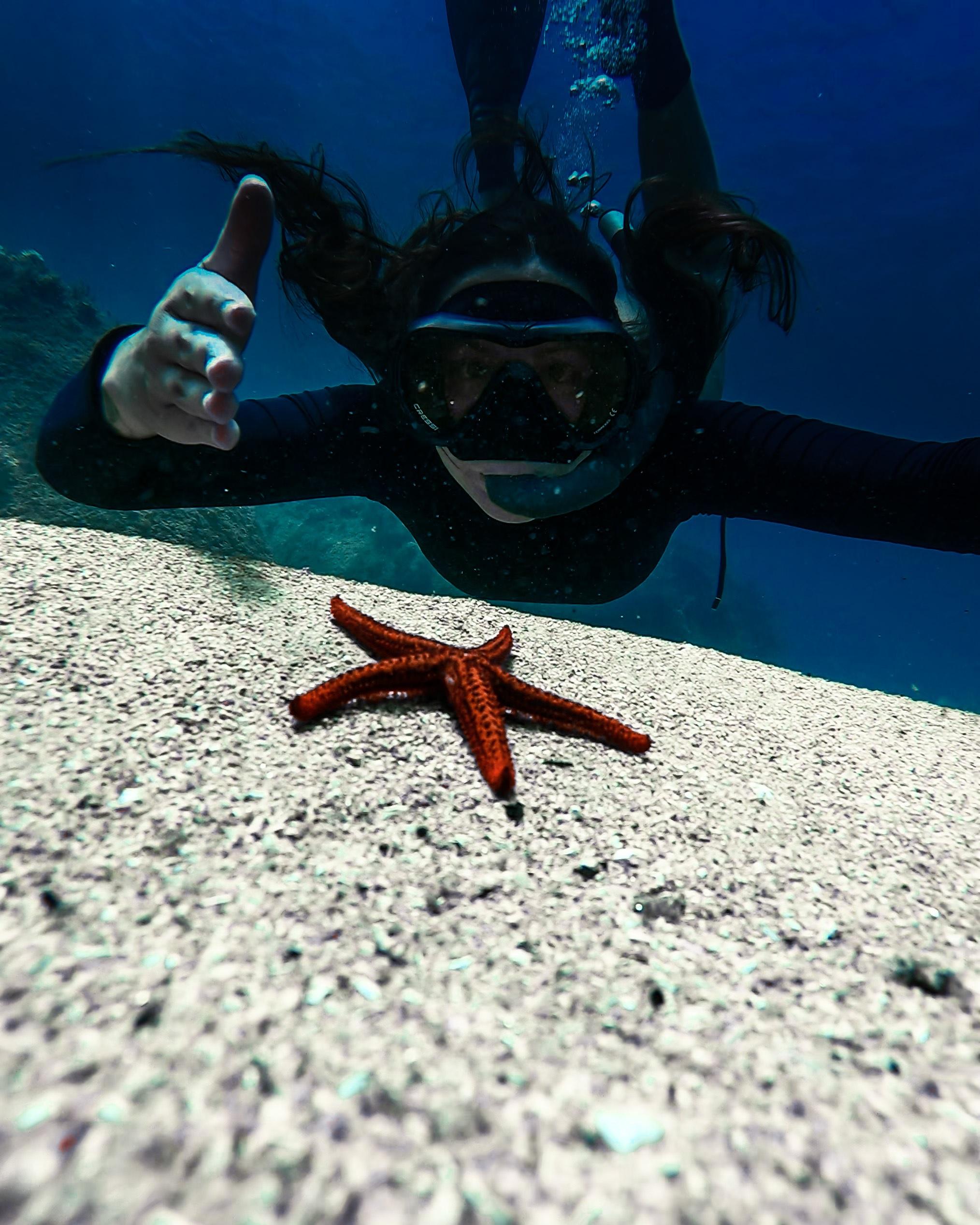 gopro, maysa santoro, mergulho, estrela do mar